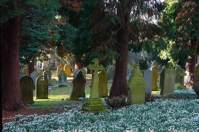 The Churchyard, St.John Lee