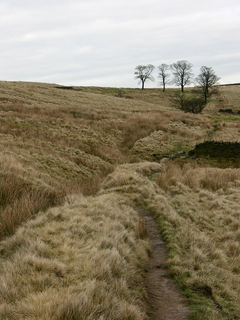 Old deer ditch, Musbury Clough