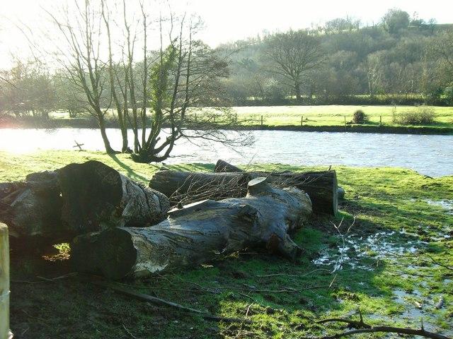 Bangor Teifi flood plain