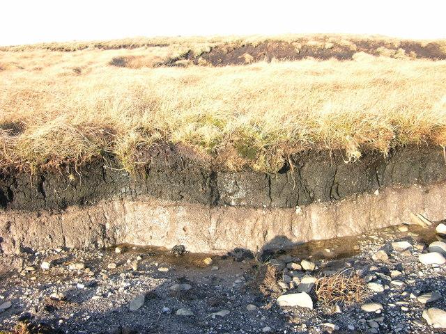 Topsoil and bedrock Black Moss - West Pennine Moors