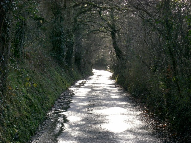 Trebedw Lane