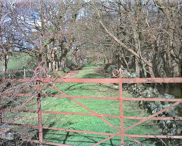Old gate and disused farmtrack in Chwilog