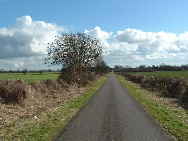 Road to Juniper Hill