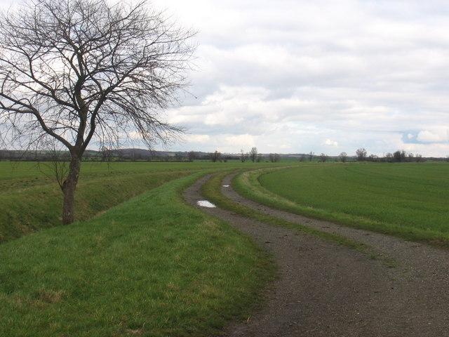 Farm track near Whaddon
