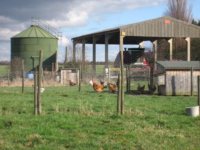 Fountain Farm at Dyer's Green