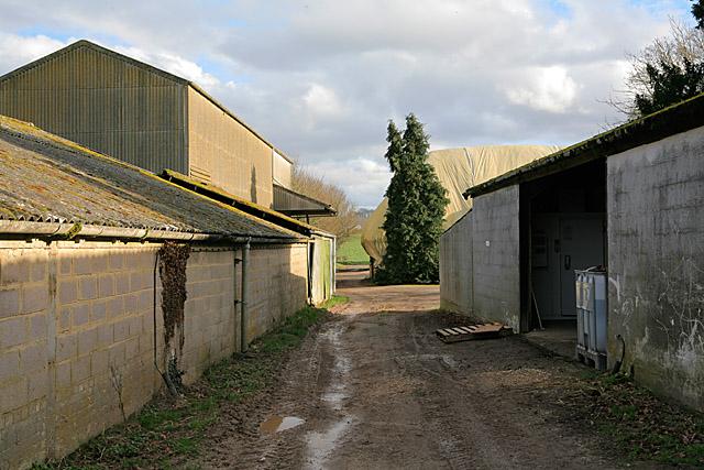 Footpath passing through Firgo Farm