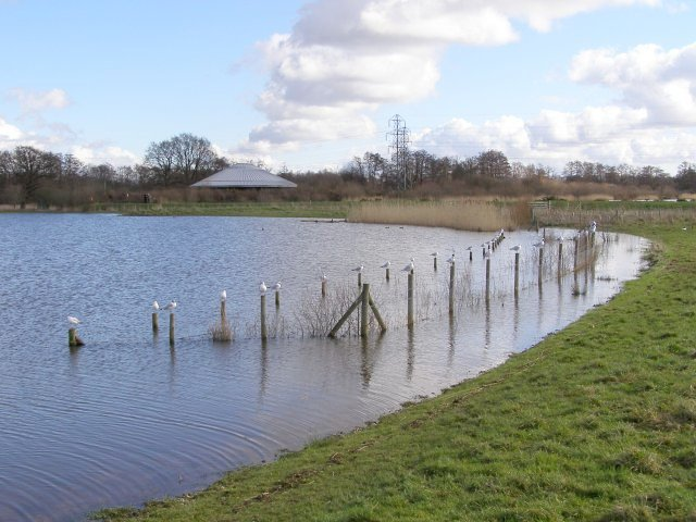 Testwood Lake, swollen with water