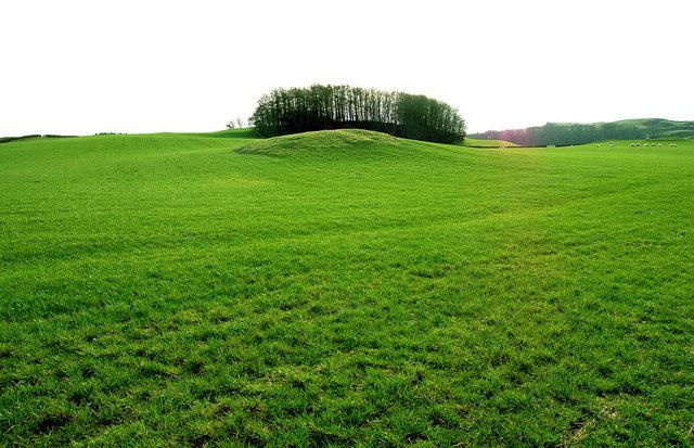 The undulating emerald greenery of Galloway