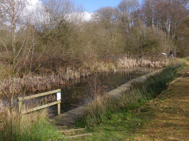 Pond near Testwood Lakes study centre