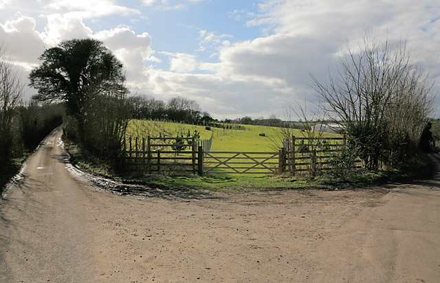 Y-junction of minor roads, and fields of Testbourne Estate