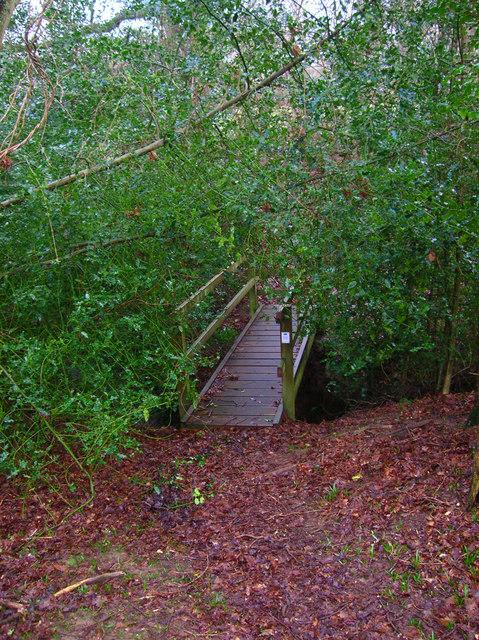 Footbridge, Eight Acre Wood
