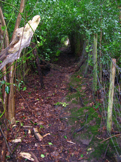 Footpath to Eight Acre Lane