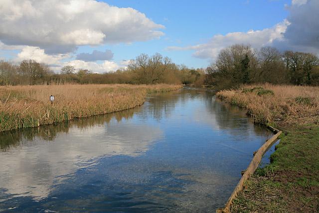 River Test near Larkwhistle Farm