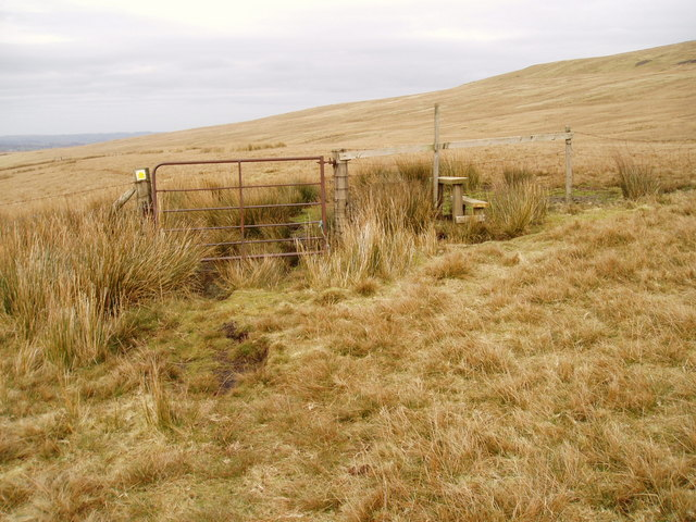 Rough pasture with gate and stile