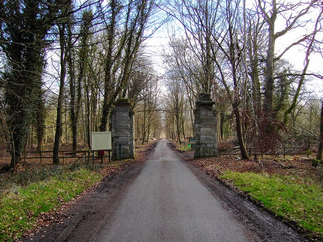 Entrance to Savernake Forest from the A4 east of Marlborough