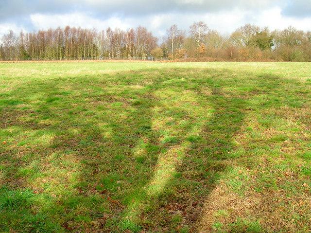 Pasture Field near Great Maxfield
