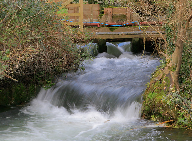 Sluice upstream of the weir at Upper Mill, Longparish