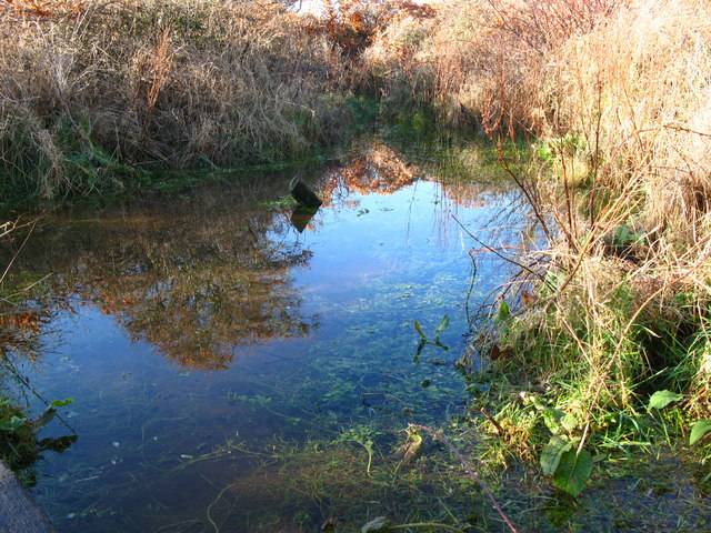 Small Pond, Gullane Bents