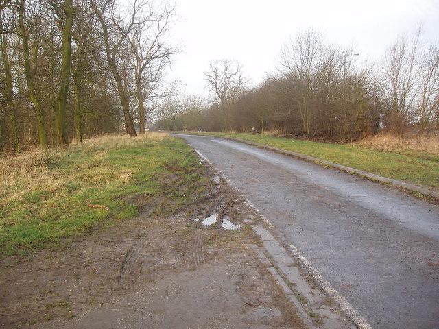 Access road near Harry Ottley Plantation, Goldthorpe