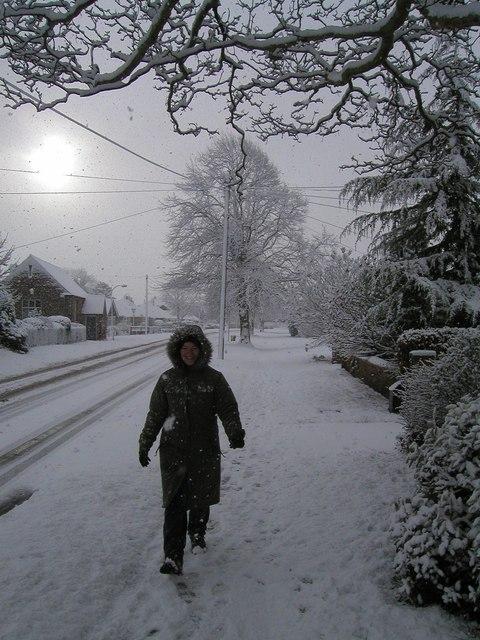 Millfield Lane, Nether Poppleton