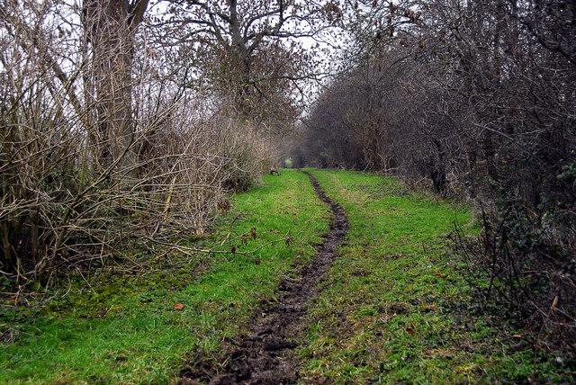 Footpath near Rowler House, Charlton - Croughton