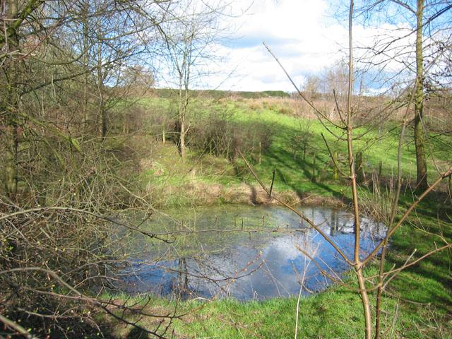 Small mere, near Edleston Brook