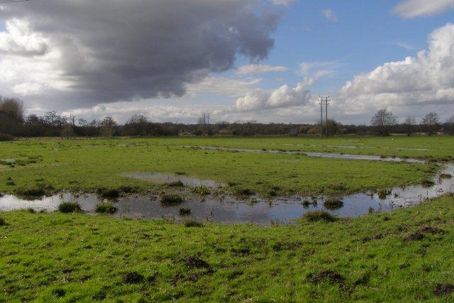 Waterlogged meadow alongside the Test Way