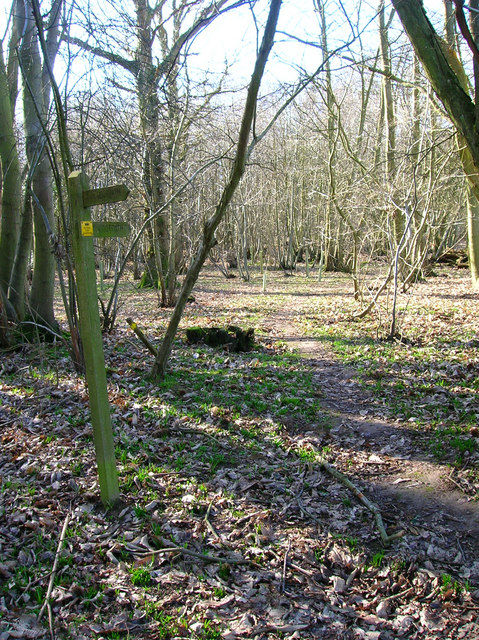 Footpath, Share Wood