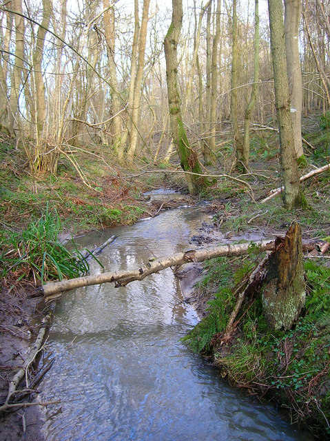 Stream, Keepers Wood