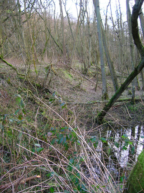 Site of Roman Bloomery, Beauport Park