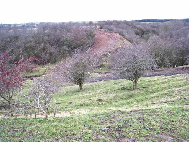 Farm track across ravine, near Embleton