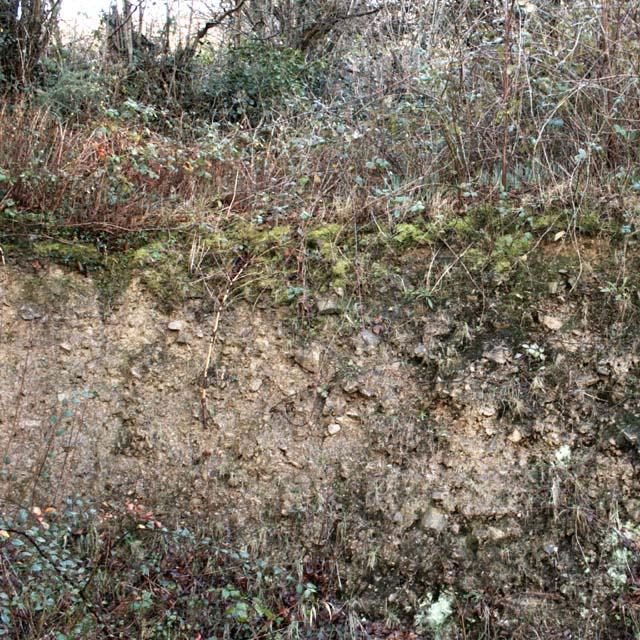 Devon Culm Subsoil