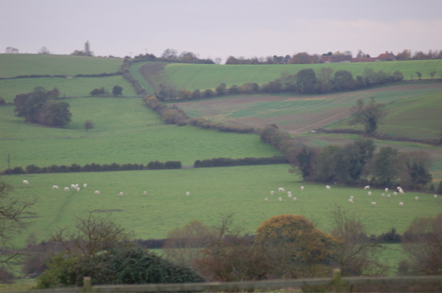 Farmland near Chearsley