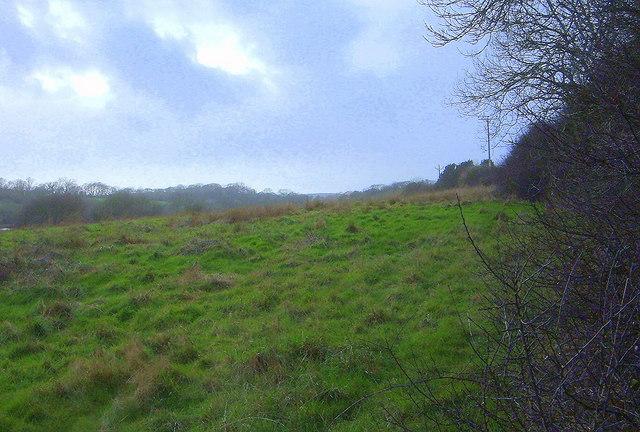 Grassland Slope
