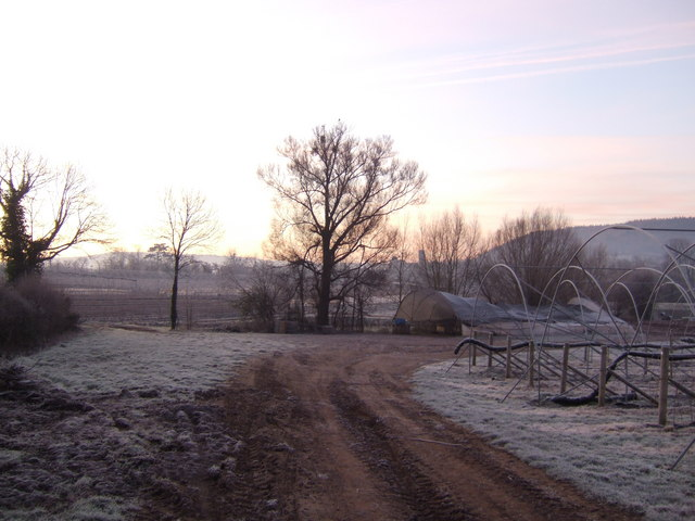 Dawn over Weston