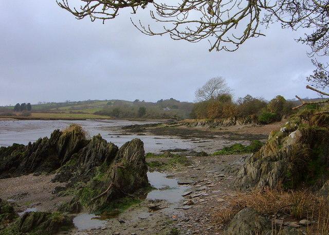 Estuary View at Low Tide