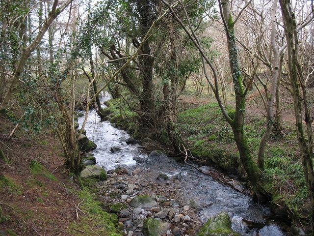 Afon Hen approaching Pont y Felin