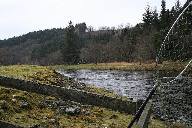 Looking upstream on Dellagyle.