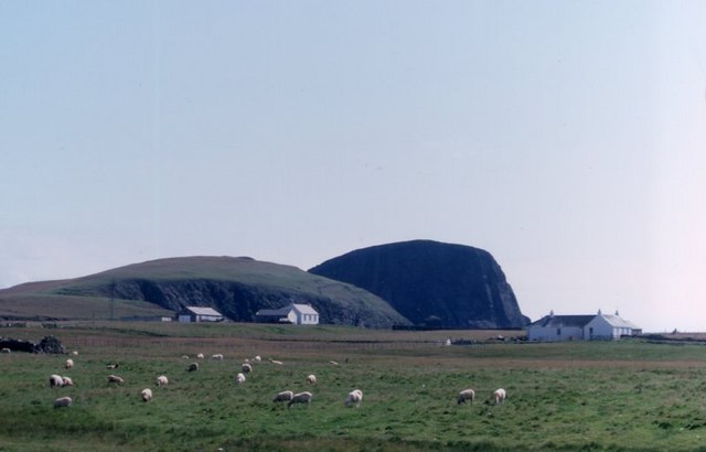 Barkland, Field and Sheep Rock