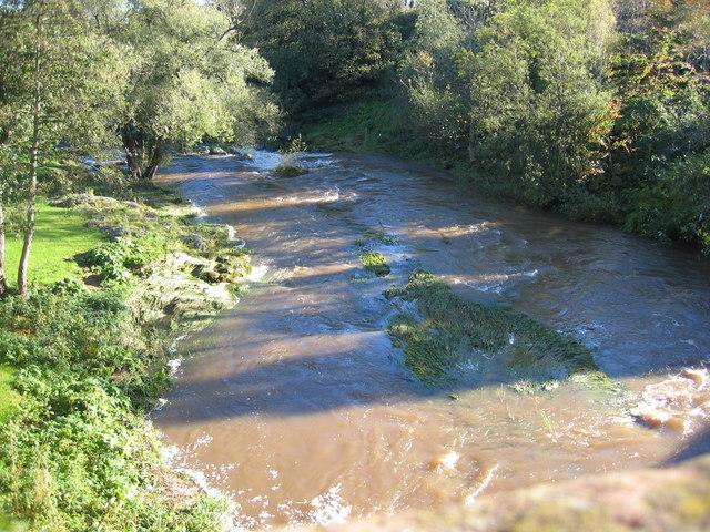 River Tyne at Preston Mill