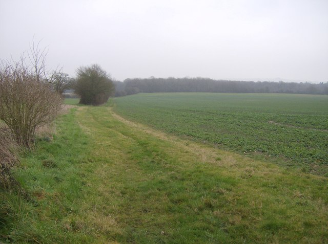 Farmland near Hornhill