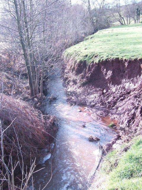 Fast-flowing brook