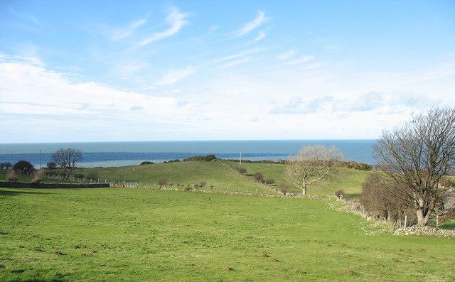 Coastal drumlin behind Tyddyn Crwner