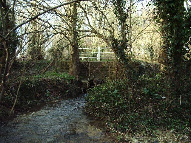 Gallos Brook