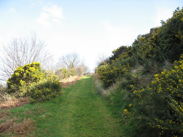 Green lane above the hamlet of Gyrn Goch
