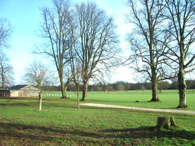 The polo ground at Kirklington Park