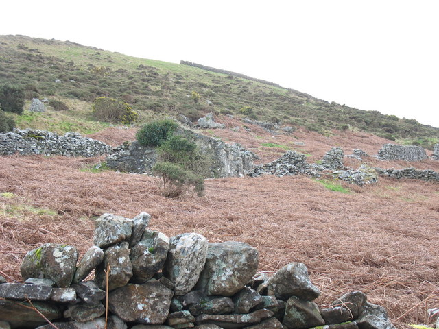 Abandoned croft and intake land on the slopes of Gyrn Goch