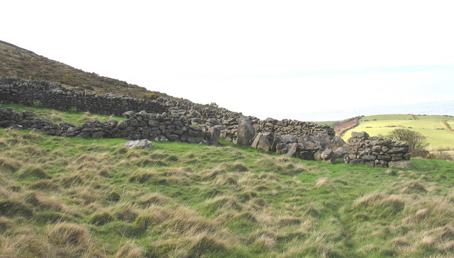 Sheepfold on the lower slopes of Gyrn Goch
