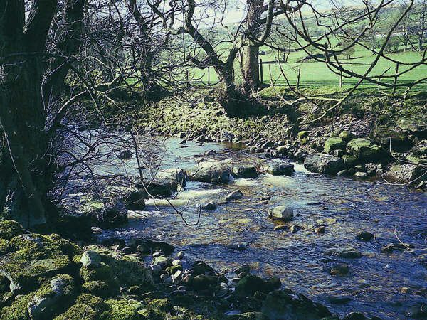 Stepping Stones over River Cover