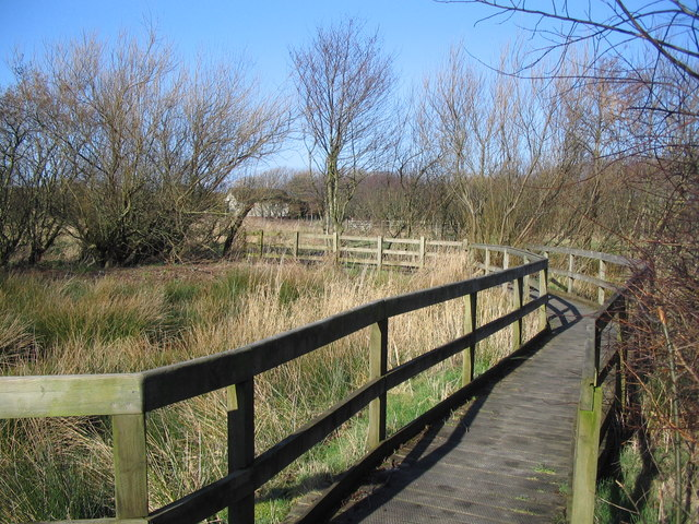Crosscanonby Carr Nature Reserve